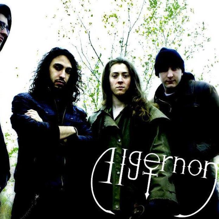 Algernon Tour Dates
