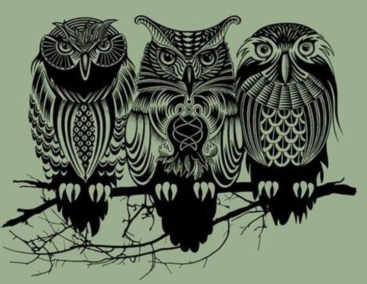 OWLS OF WALDEN Tour Dates
