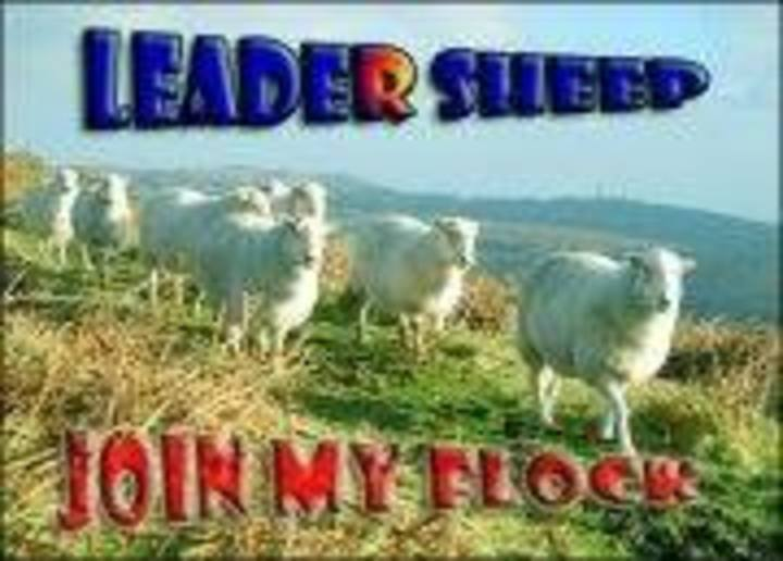 Leader Sheep Tour Dates