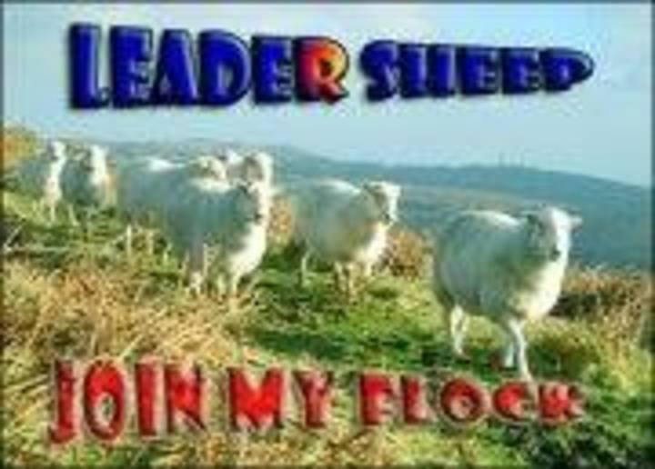 Leader Sheep Tour Dates