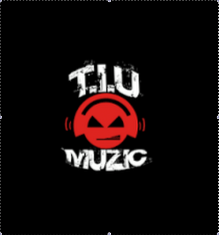 Tiu Muzic Tour Dates