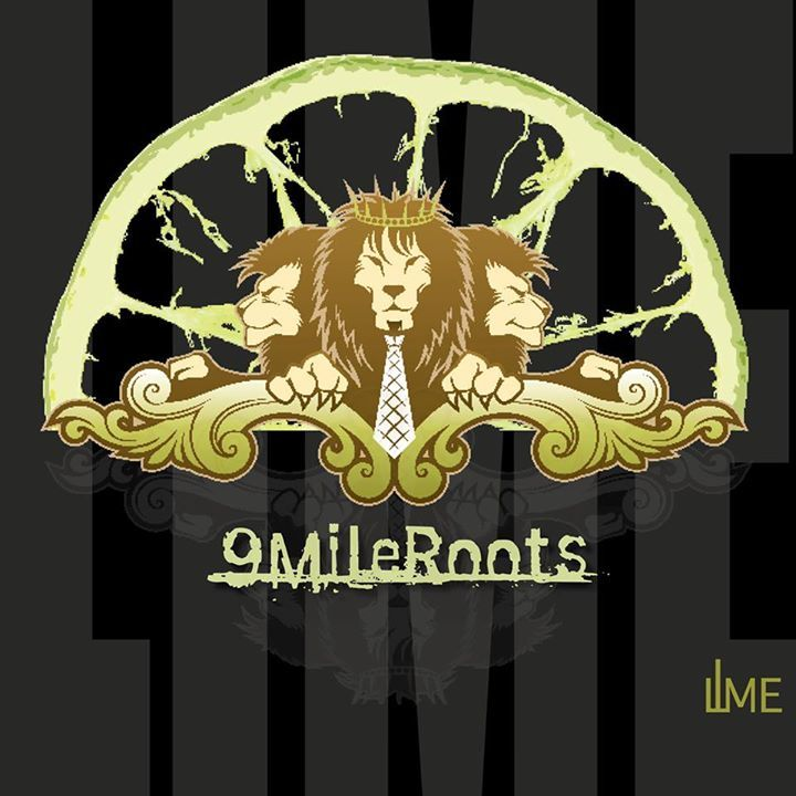 9 Mile Roots @ Looney's Pub - Fulton, MD