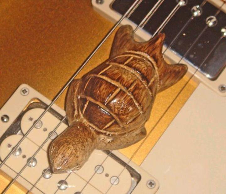 Tortuga! Tour Dates