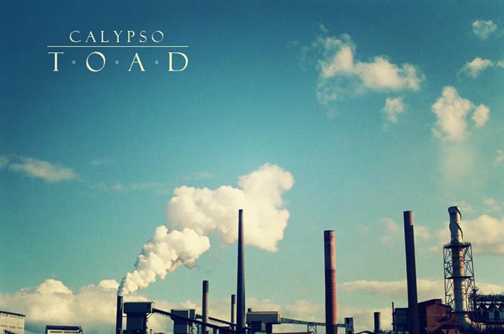 Calypso Toad Tour Dates