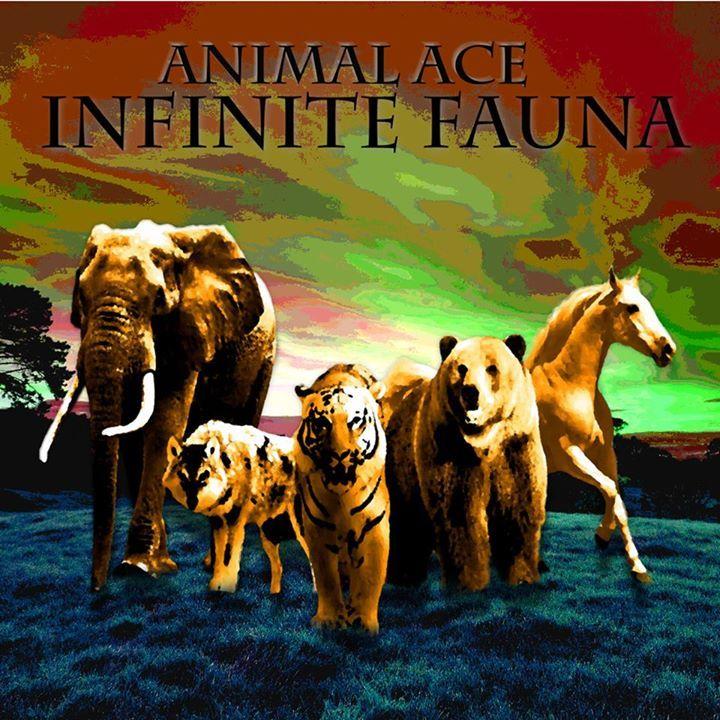 AnimalAce Tour Dates