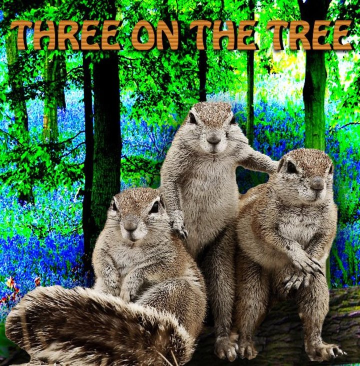 Three On The Tree Tour Dates