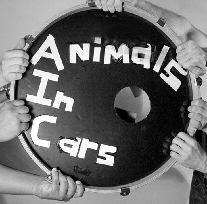 Animals in Cars Tour Dates