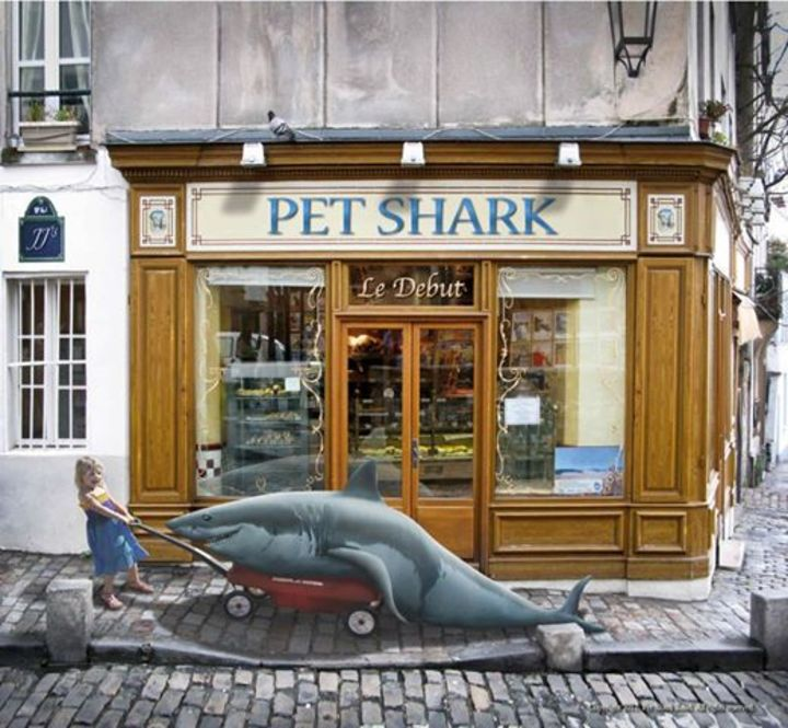 Pet Shark Tour Dates