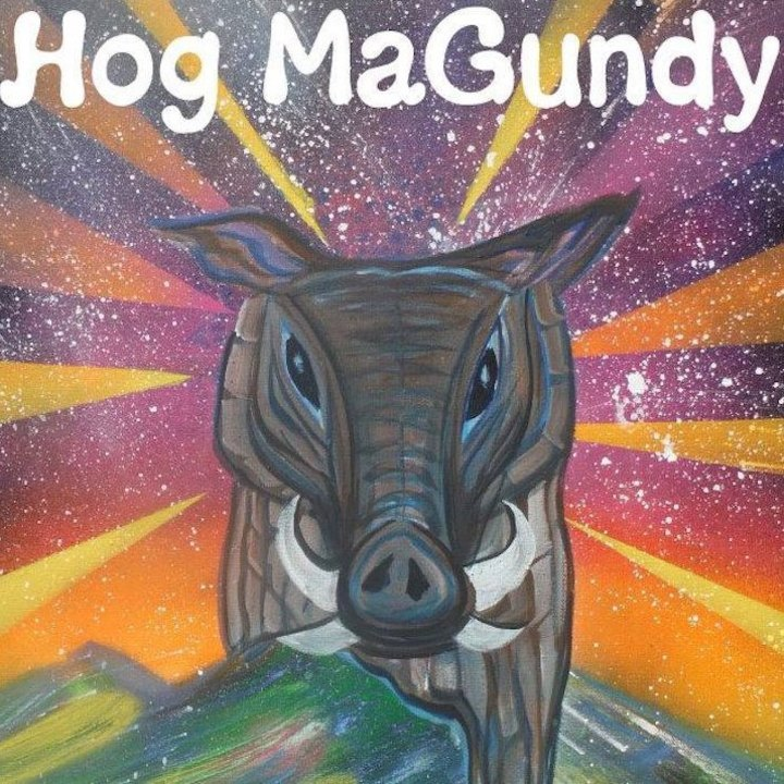 Hog MaGundy @ The Buffalo Rose - Golden, CO