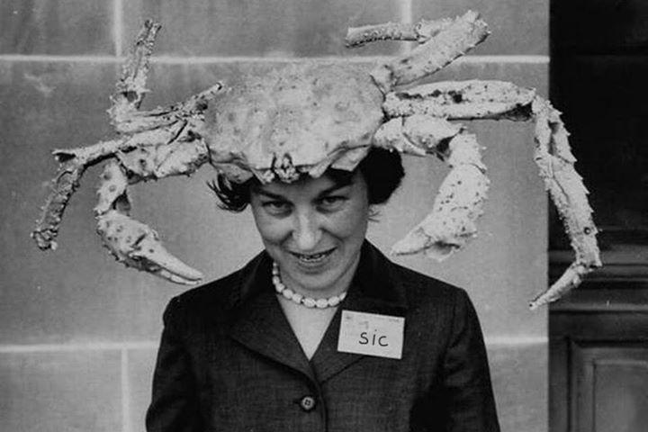 Street Crab Tour Dates