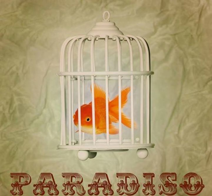 Paradisio Tour Dates
