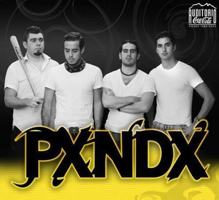 Pxndx Bonanza Tour Dates