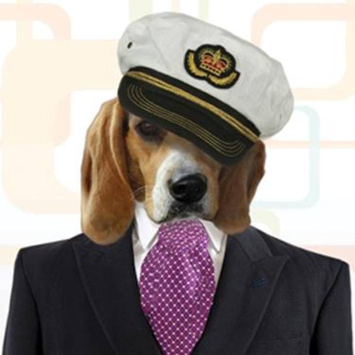 The Regal Beagles Yacht Rock Band Tour Dates