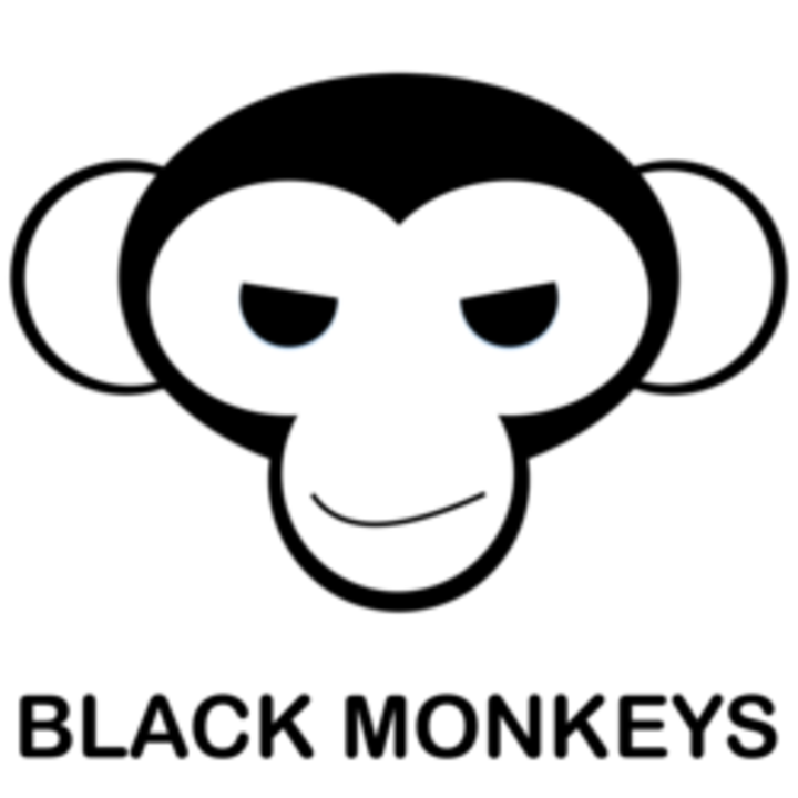 Black Monkeys @ Le Bureau - Labege, France