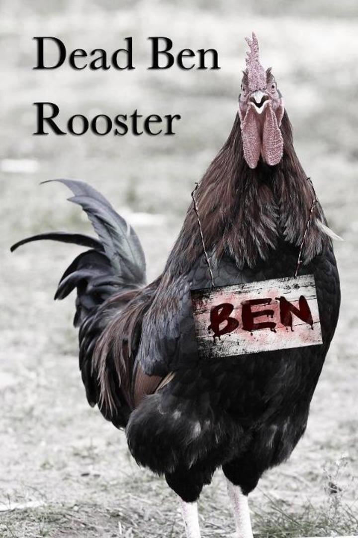 Dead Ben Rooster Tour Dates