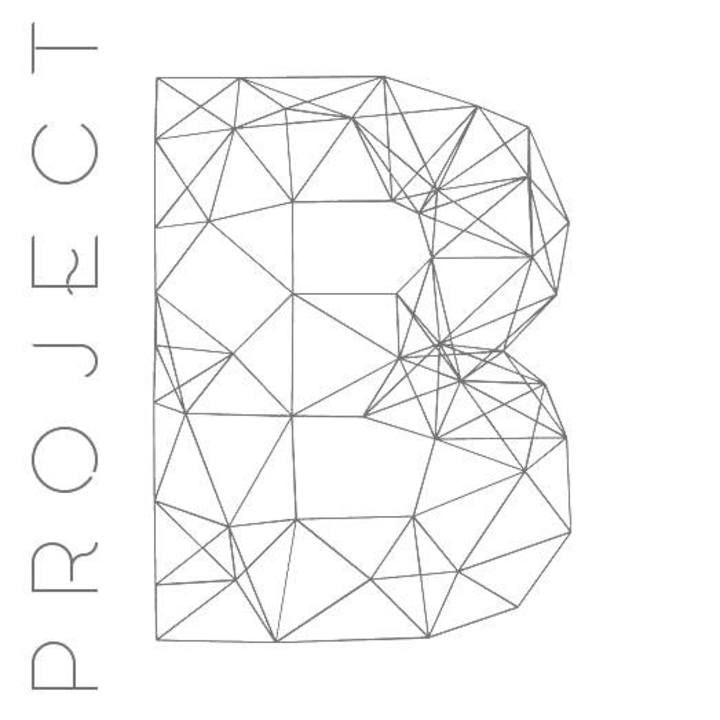 Project B Tour Dates