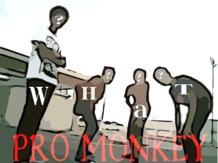 Pro Monkey Tour Dates