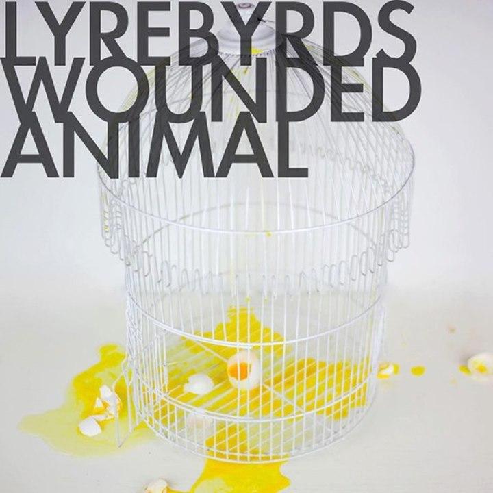 Lyrebyrds Tour Dates
