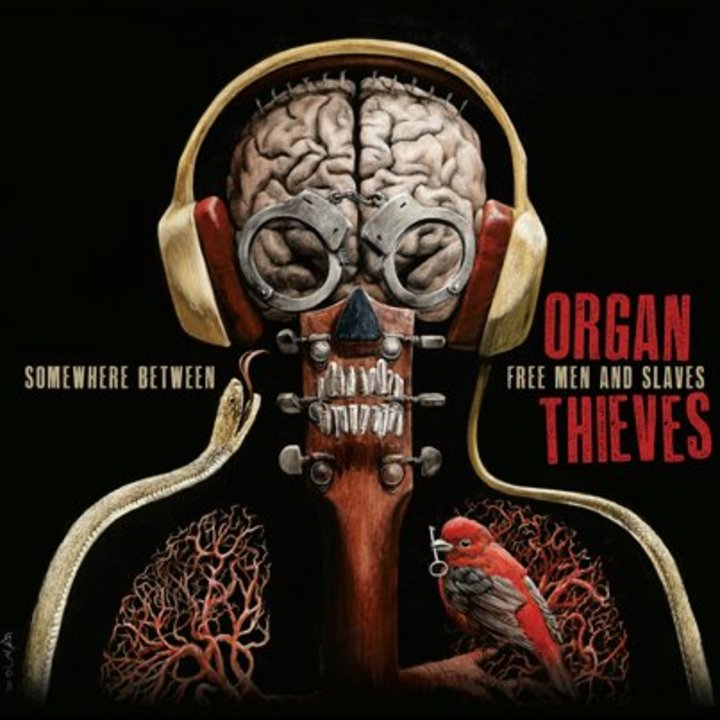 Organ Thieves Tour Dates