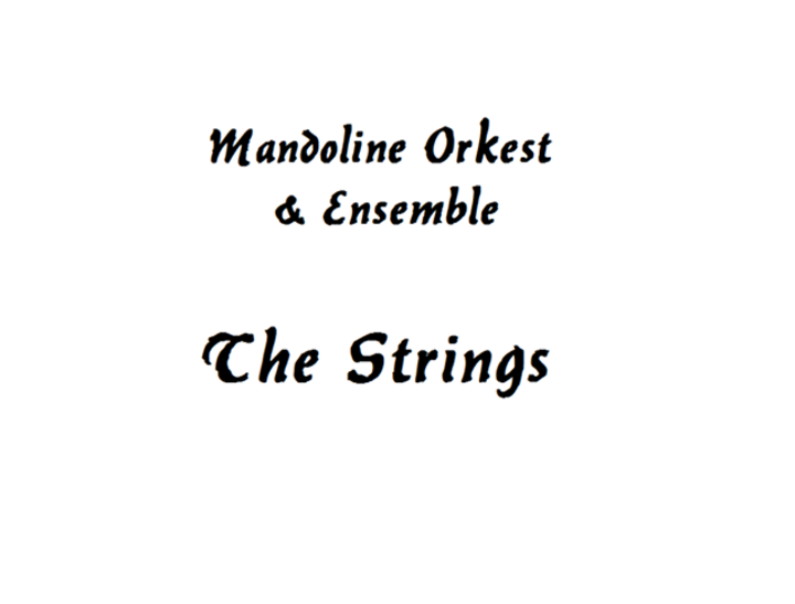 Mandoline Orkest en Ensemble The Strings @ Kerk - Stein, Netherlands