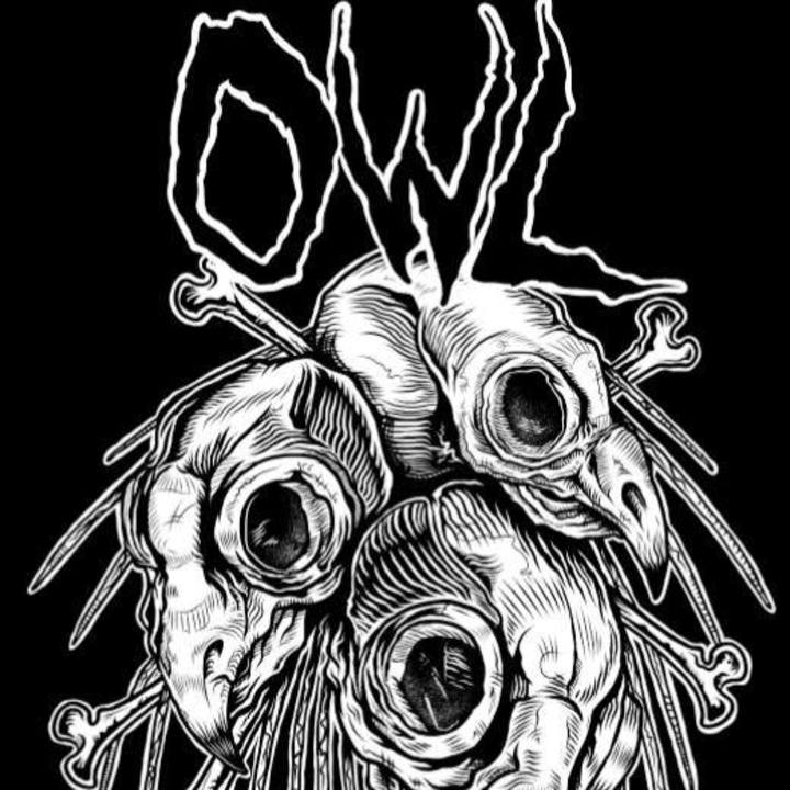 Owl Tour Dates