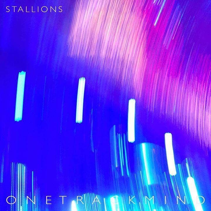 Stallions Tour Dates