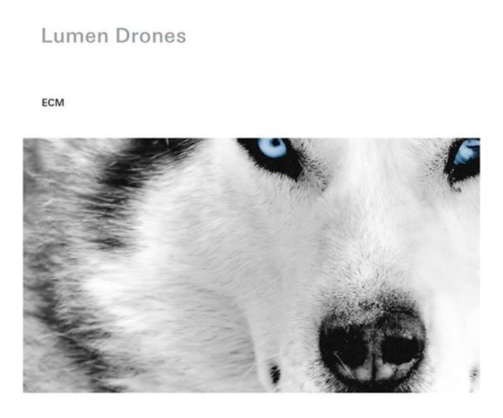 LUMEN DRONES Tour Dates