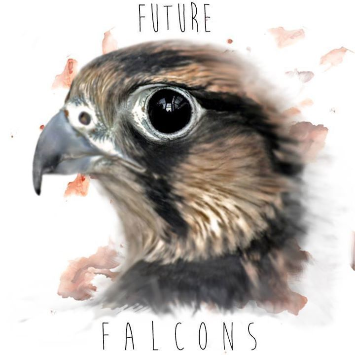 Future Falcons Tour Dates