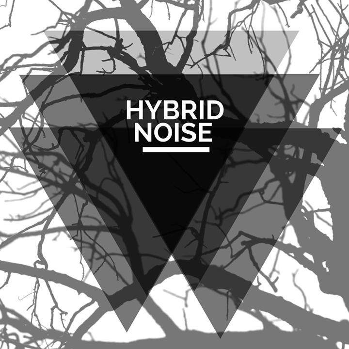 Hybrid Noise Tour Dates