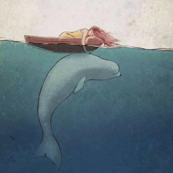 Sueño con belugas Tour Dates