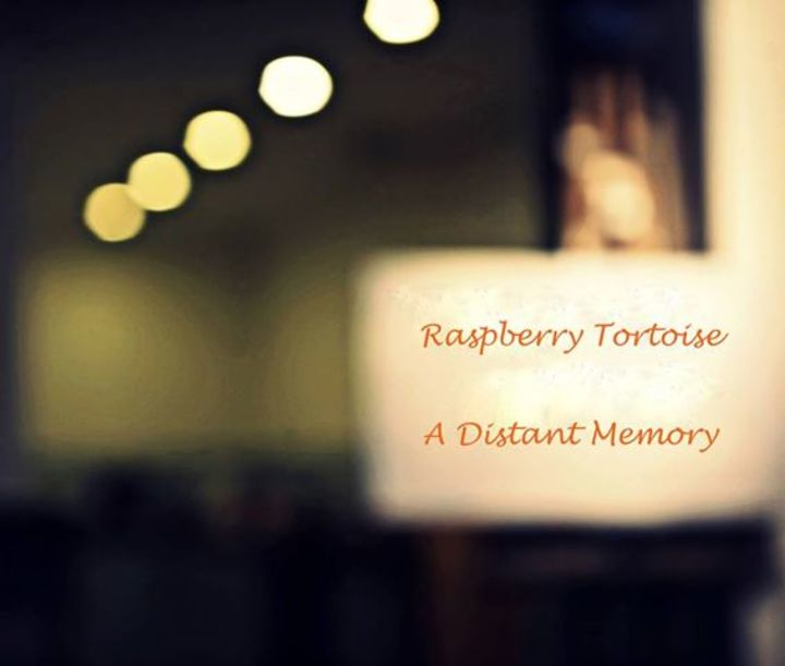 Raspberry Tortoise Tour Dates