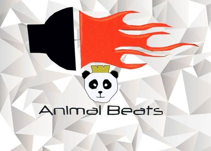 Animal Beats Tour Dates