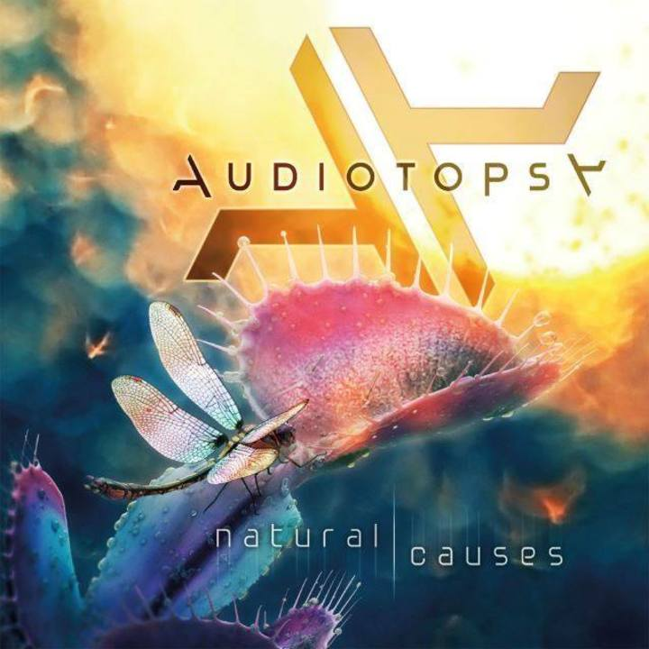 Audiotopsy Tour Dates