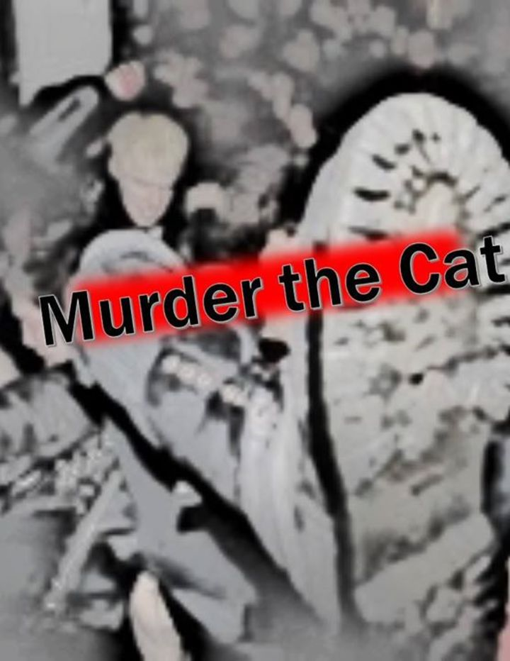 Murder The Cat Tour Dates