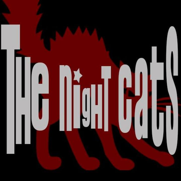 Night Cats @ Le Kerry's - Clermont-Ferrand, France