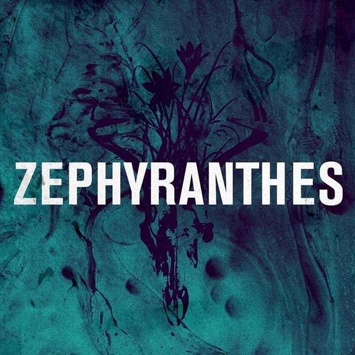Zephyranthes Tour Dates