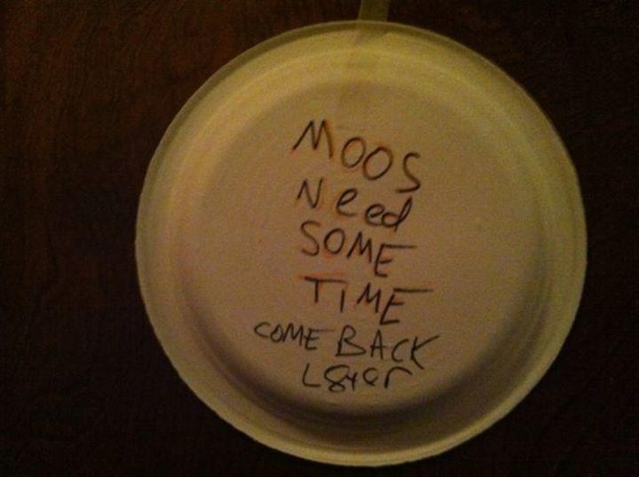 The Omega Moos Tour Dates