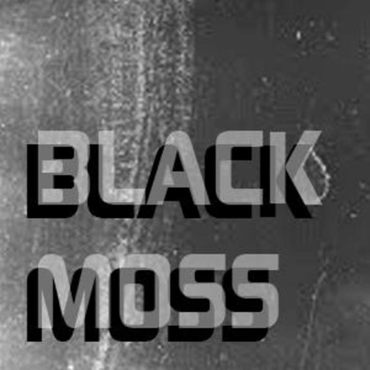 Black Moss Tour Dates