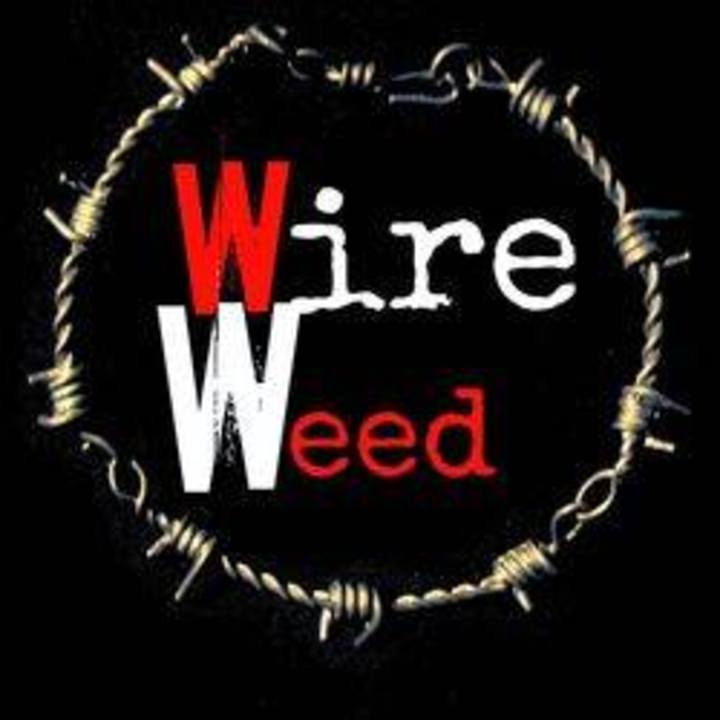 Wire Weed Tour Dates