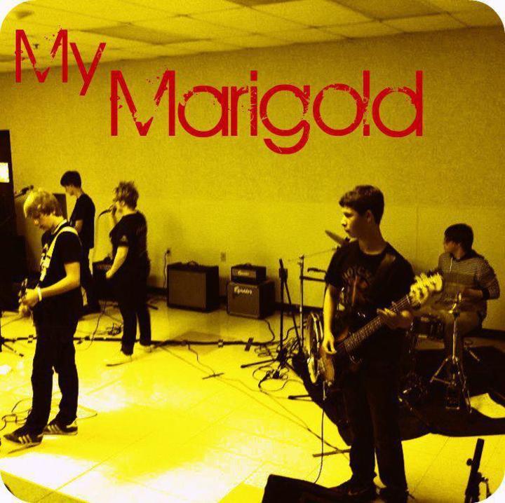 My Marigold Tour Dates