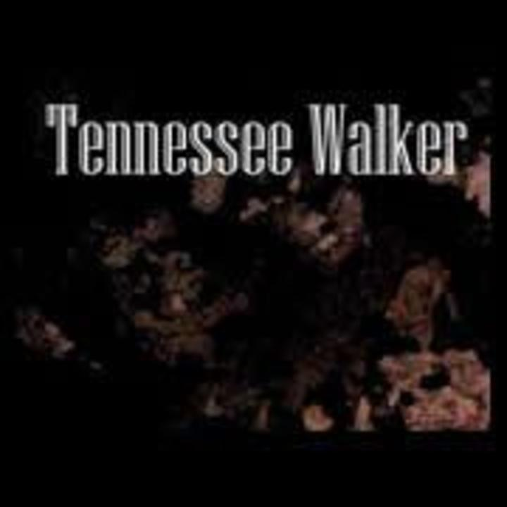 Tennessee Walker Tour Dates