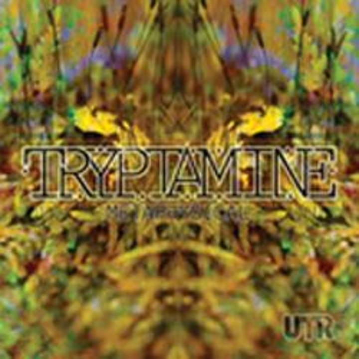 Tryptamine Tour Dates