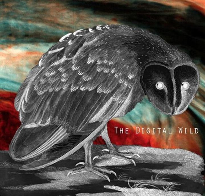 The Digital Wild Tour Dates