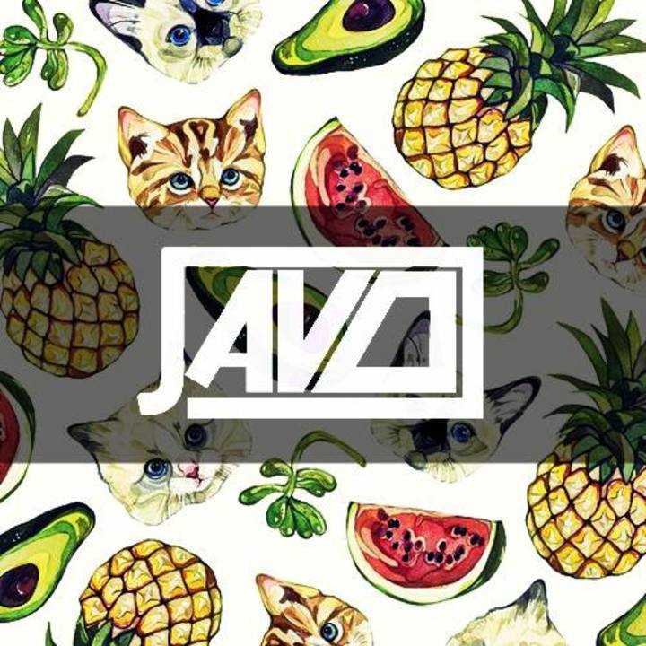 Javo Tour Dates
