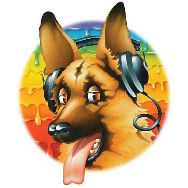 Dead Dog's Eye Tour Dates