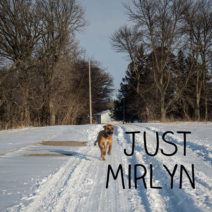 Just Mirlyn Tour Dates