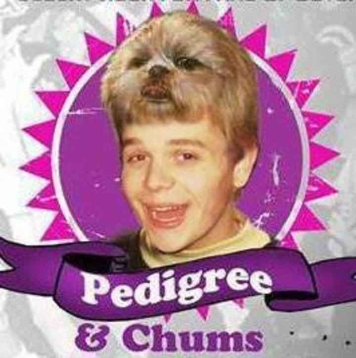 Pedigree & Chums Tour Dates