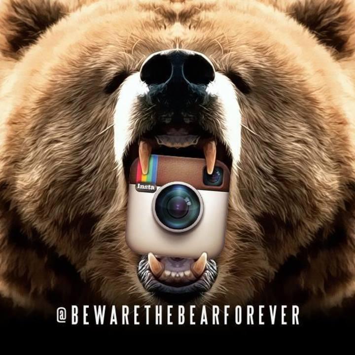 Beware the Bear Tour Dates