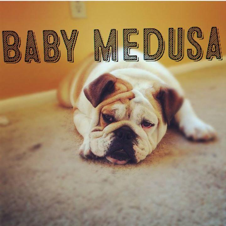 Baby Medusa Tour Dates