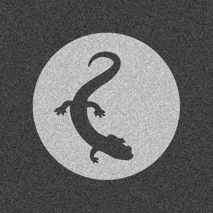Lizard Pool Tour Dates